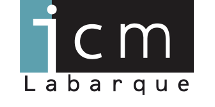 ICM Labarque IT, Webshop, Webdesign en videoproductie